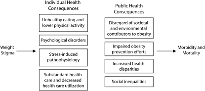 individual and public health consequences of weight stigma